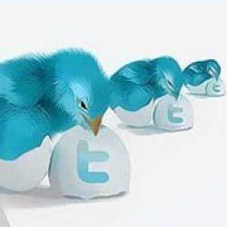 Продвижение с помощью Твиттера